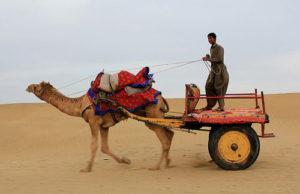 Jaisalmer-City-tour